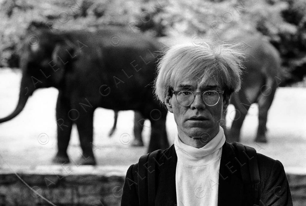 19830612_Andy Warhol elephant